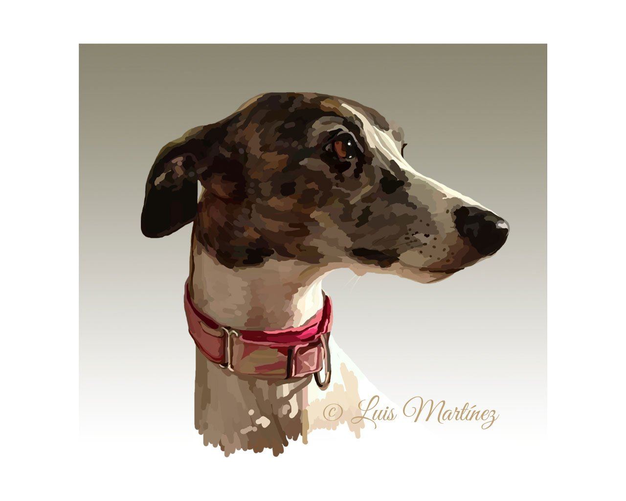 whippet_phoeby