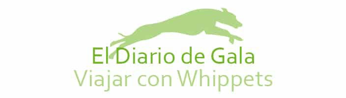 Viajar con Whippets