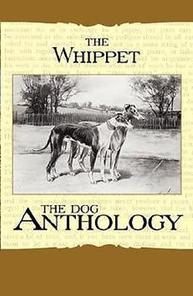 The Whippet: The Dog Anthology - 2007