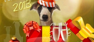 Merry Whippets